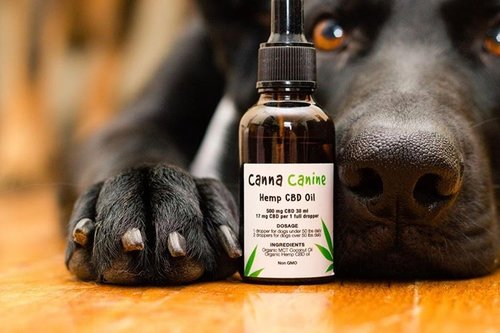 clinical cannabis